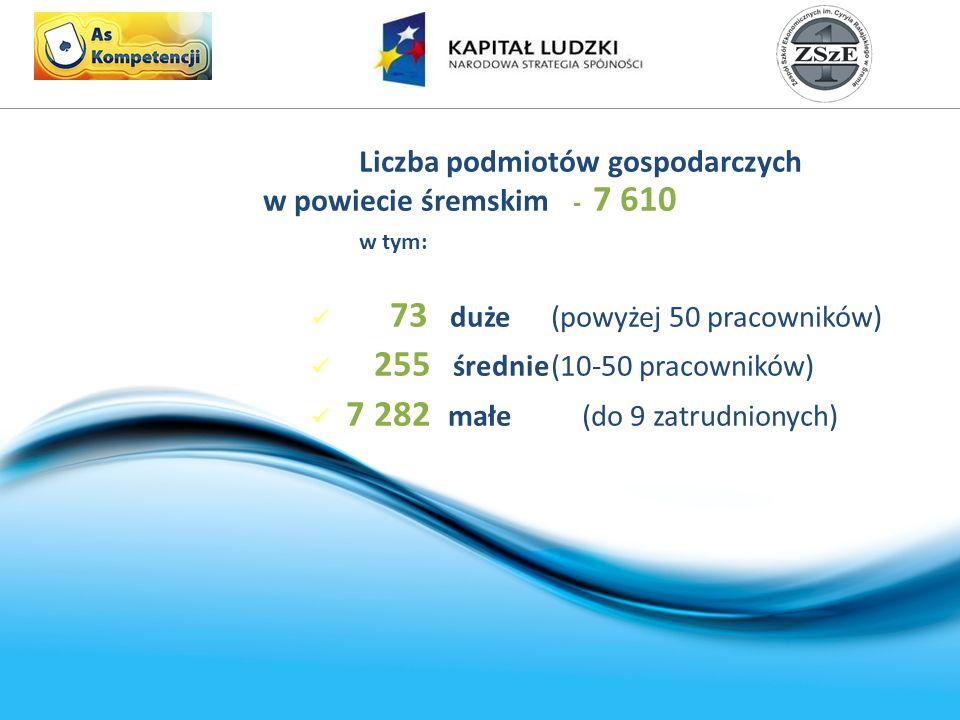 Liczba podmiotów gospodarczych w powiecie śremskim - 7 610 w tym: 73 duże(powyżej 50 pracowników) 255 średnie(10-50 pracowników) 7 282 małe (do 9 zatrudnionych)