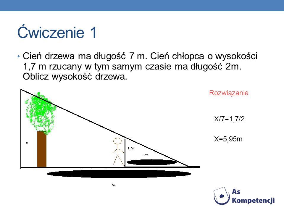 Ćwiczenie 1 Cień drzewa ma długość 7 m.