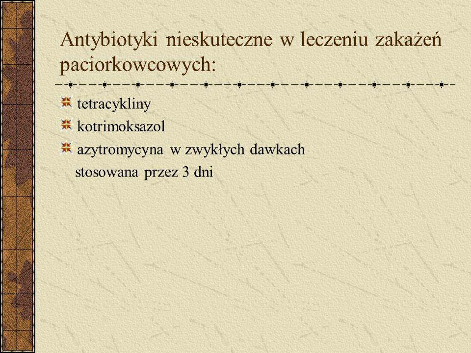 Antybiotyki nieskuteczne w leczeniu zakażeń paciorkowcowych: tetracykliny kotrimoksazol azytromycyna w zwykłych dawkach stosowana przez 3 dni