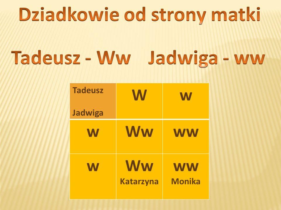 Tadeusz Jadwiga Ww wWwww wWw Katarzyna ww Monika