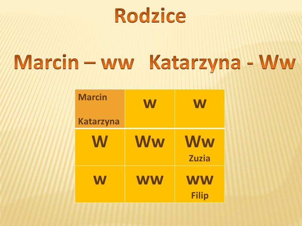 Marcin Katarzyna ww WWw Zuzia www Filip