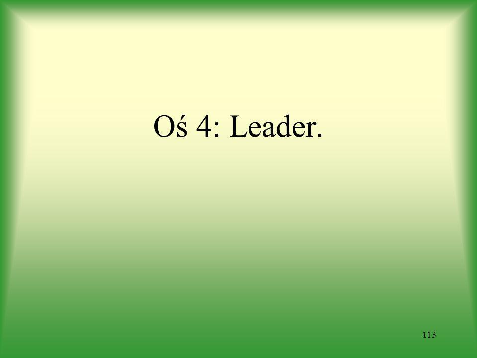 Oś 4: Leader. 113