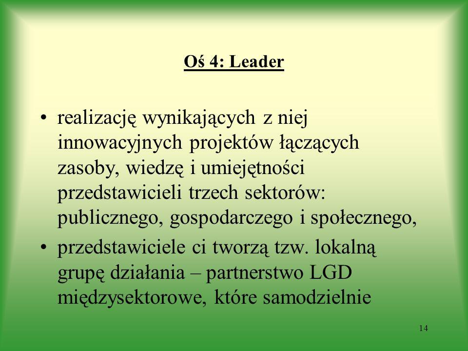 Oś 4: Leader realizację wynikających z niej innowacyjnych projektów łączących zasoby, wiedzę i umiejętności przedstawicieli trzech sektorów: publiczne