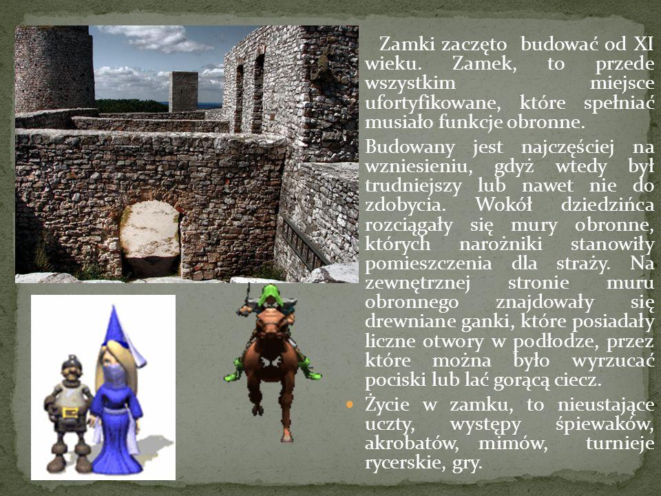 Zamki zaczęto budować od XI wieku. Zamek, to przede wszystkim miejsce ufortyfikowane, które spełniać musiało funkcje obronne. Budowany jest najczęście