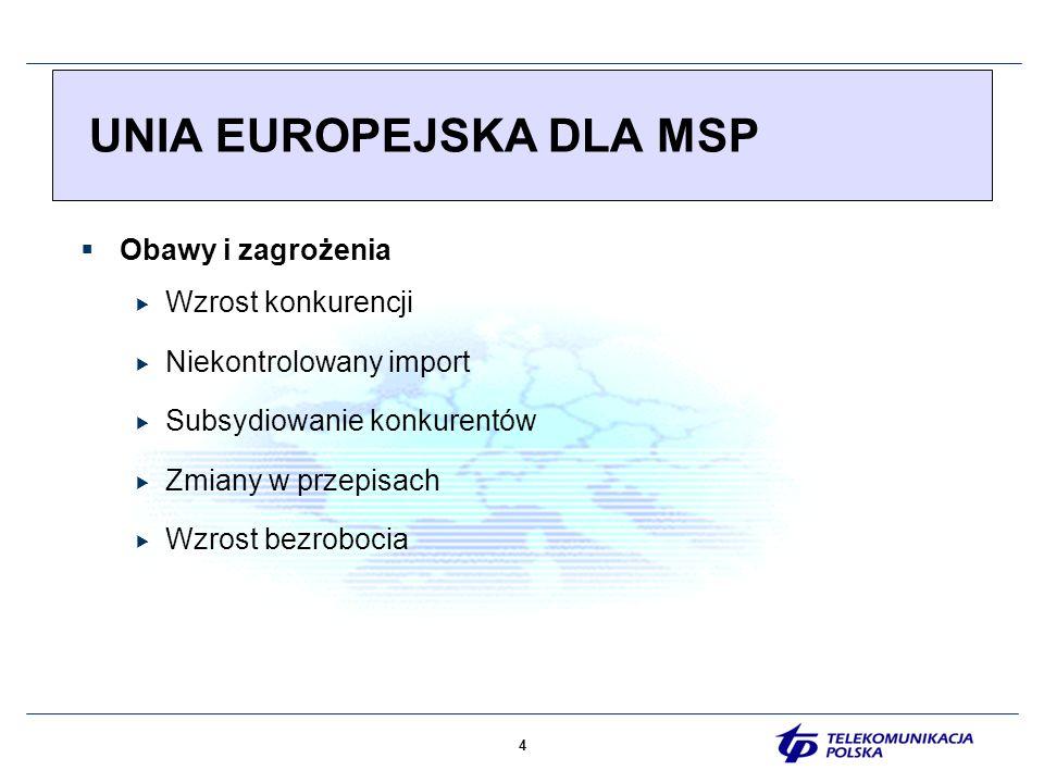 5 UNIA EUROPEJSKA DLA MSP eEuropa- (Feira 2000) Społeczeństwo informacyjne oparte na wiedzy i technologii Europejska Karta Małych Przedsiębiorstw (Feira 2000) Rozwój edukacji i szkoleń z zakresu przedsiębiorczości Rozwój kształcenia zawodowego i ustawicznego Poprawa dostępności usług elektronicznych Poprawa dostępu do nowych technologii Promocja skutecznych zastosowań e-biznesu i wysokiej jakości systemów wspierania przedsiebiorczości