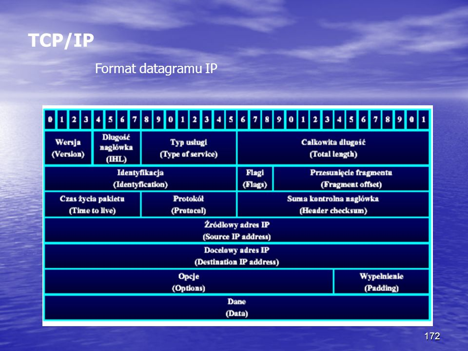 172 TCP/IP Format datagramu IP