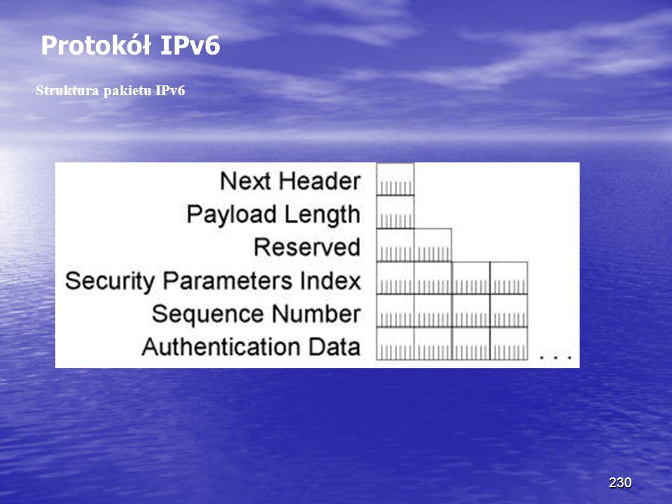 230 Protokół IPv6 Struktura pakietu IPv6