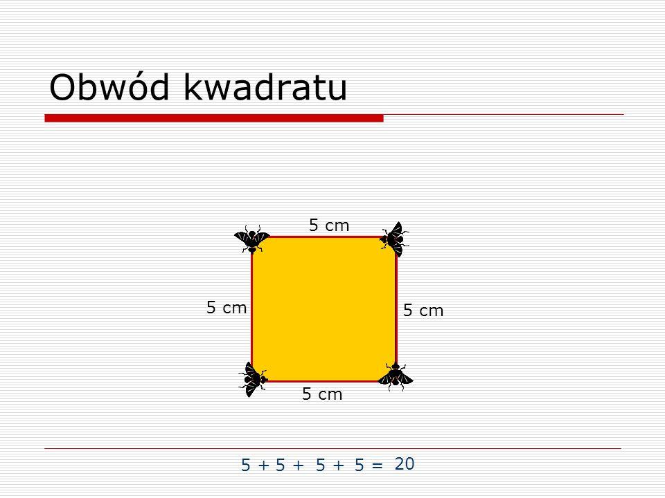 Obwód kwadratu 5 + 5 = 20 5 cm