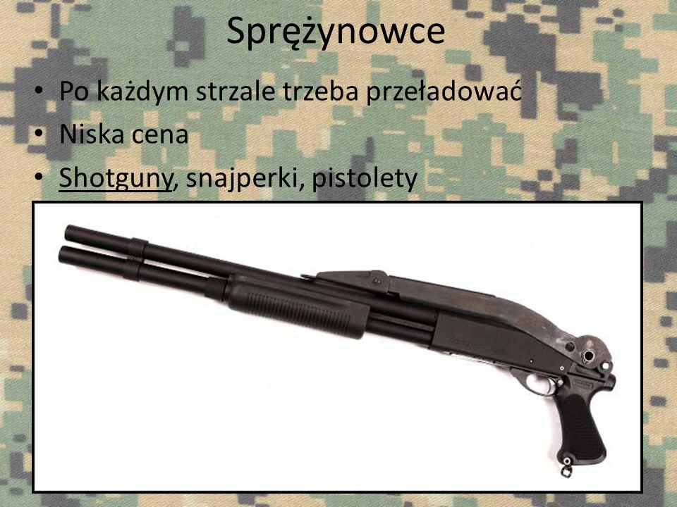 Po każdym strzale trzeba przeładować Niska cena Shotguny, snajperki, pistolety
