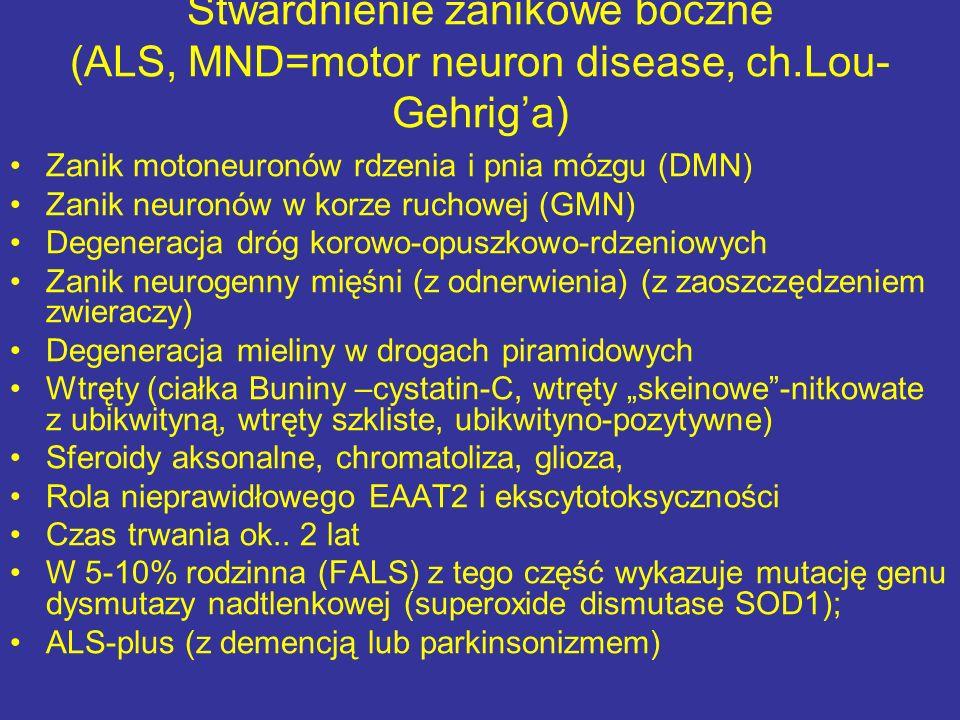 Zanik motoneuronów rdzenia i pnia mózgu (DMN) Zanik neuronów w korze ruchowej (GMN) Degeneracja dróg korowo-opuszkowo-rdzeniowych Zanik neurogenny mię