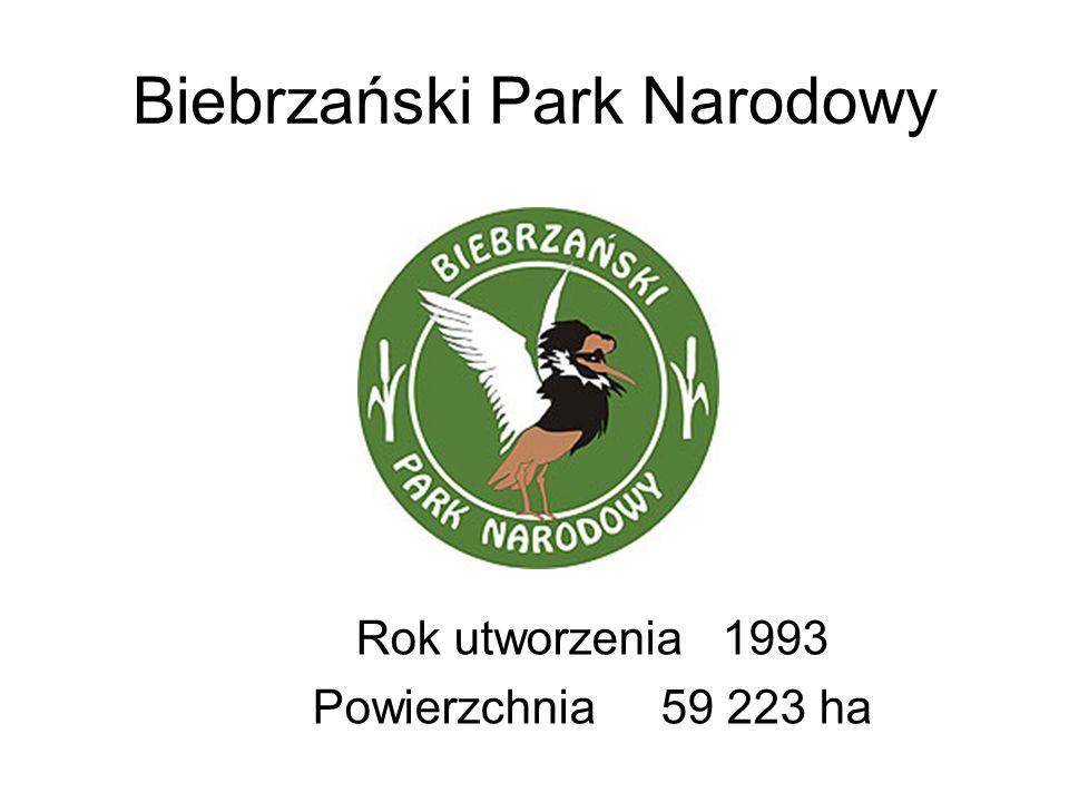Biebrzański Park Narodowy Rok utworzenia 1993 Powierzchnia 59 223 ha