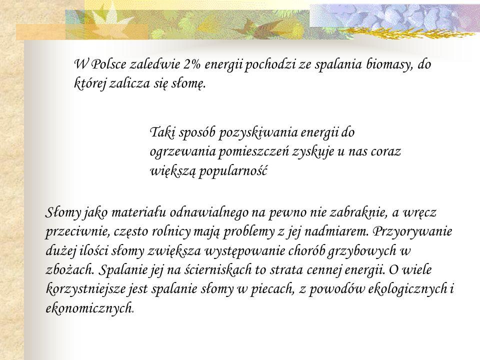 W Polsce zaledwie 2% energii pochodzi ze spalania biomasy, do której zalicza się słomę. Taki sposób pozyskiwania energii do ogrzewania pomieszczeń zys
