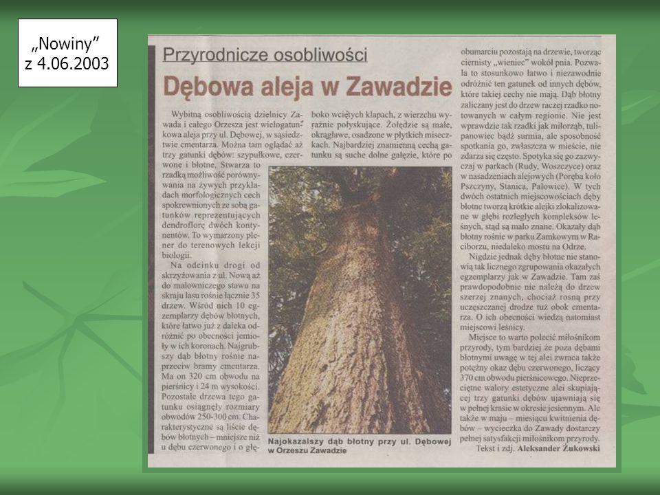 Nowiny z 4.06.2003