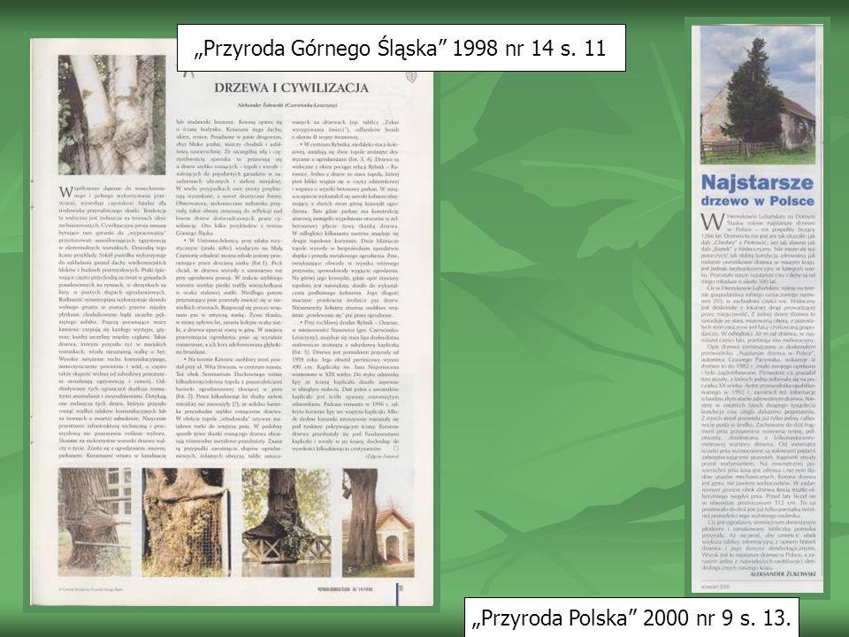 Egzotyczne pomniki przyrody w Ornontowicach Jednoroczne, miękkie igły matasekwoji