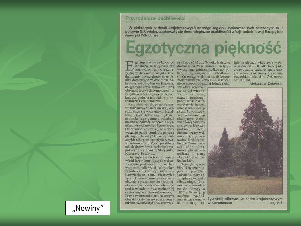 Nowiny z 3.07.2002