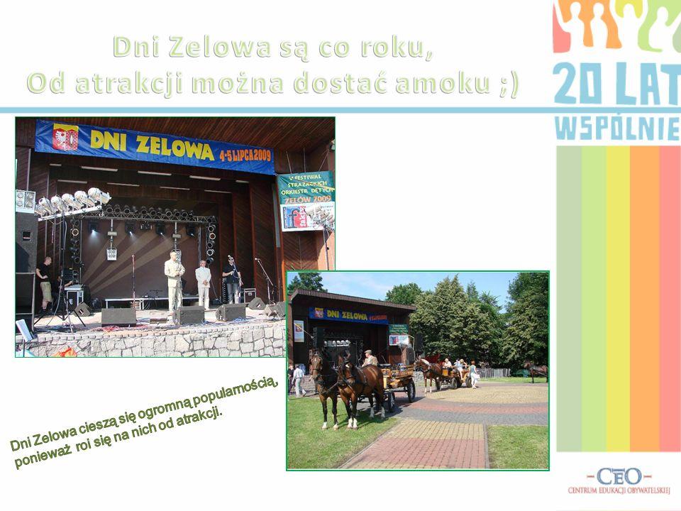 - Czy uważa Panu, że Zelów przez ostatnie 20 lat rozwinął w sferze kultury? - Tak, myślę, że nasze miasto rozwija się z roku na rok. Uwielbiam wystawy
