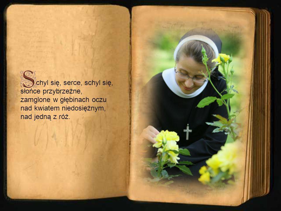 chyl się, serce, schyl się, słońce przybrzeżne, zamglone w głębinach oczu nad kwiatem niedosiężnym, nad jedną z róż.
