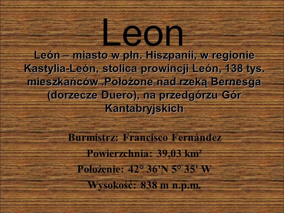 Leon León – miasto w płn.Hiszpanii, w regionie Kastylia-León, stolica prowincji León, 138 tys.