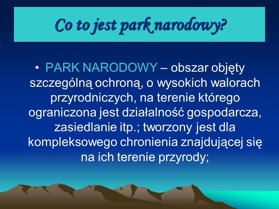 Co to jest park narodowy? PARK NARODOWY – obszar objęty szczególną ochroną, o wysokich walorach przyrodniczych, na terenie którego ograniczona jest dz