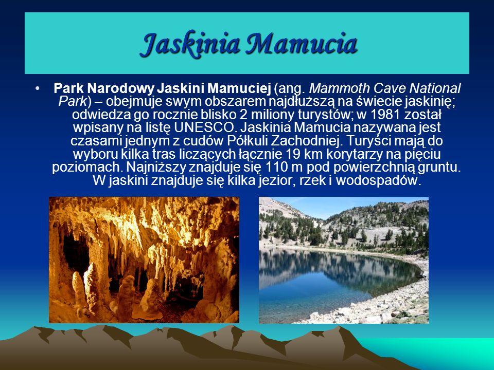 Jaskinia Mamucia Park Narodowy Jaskini Mamuciej (ang. Mammoth Cave National Park) – obejmuje swym obszarem najdłuższą na świecie jaskinię; odwiedza go