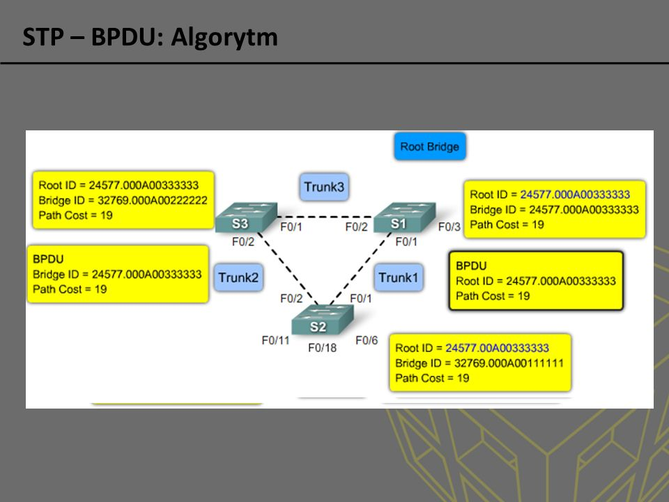 STP – BPDU: Algorytm