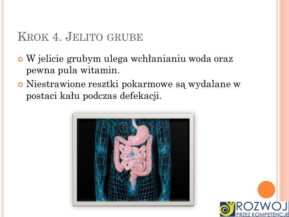 K ROK 4. J ELITO GRUBE W jelicie grubym ulega wchłanianiu woda oraz pewna pula witamin. Niestrawione resztki pokarmowe są wydalane w postaci kału podc