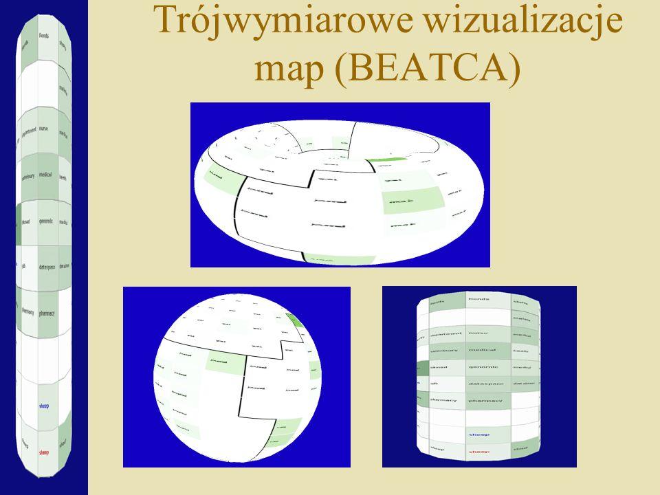 Trójwymiarowe wizualizacje map (BEATCA)