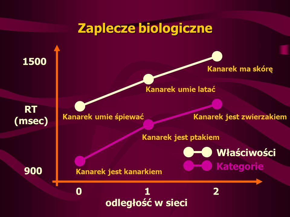 Zaplecze biologiczne 012 1500 900 RT (msec) odległość w sieci Kanarek umie śpiewać Kanarek umie latać Kanarek ma skórę Kanarek jest kanarkiem Kanarek jest ptakiem Kanarek jest zwierzakiem Właściwości Kategorie