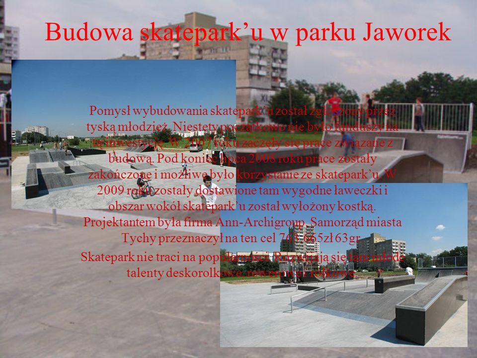 Pomysł wybudowania skateparku został zgłoszony przez tyską młodzież. Niestety początkowo nie było funduszy na tą inwestycję. W 2007 roku zaczęły się p