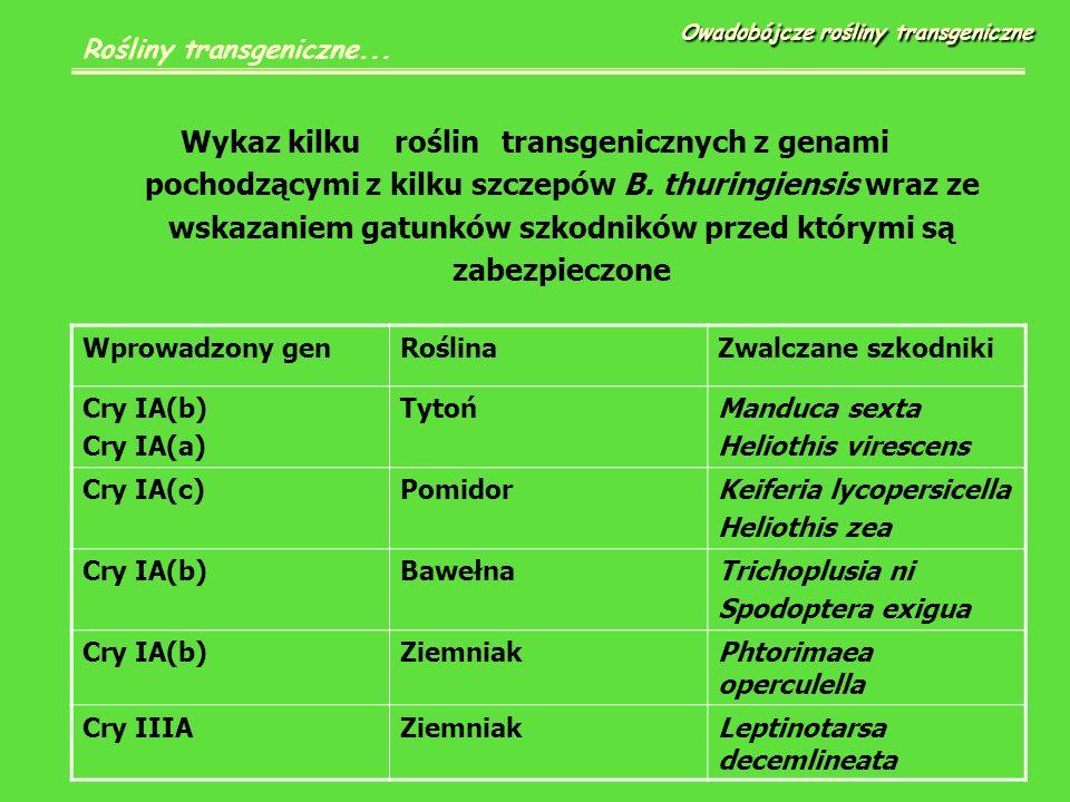 Wykazkilkuroślintransgenicznych z genami pochodzącymi z kilku szczepów B.