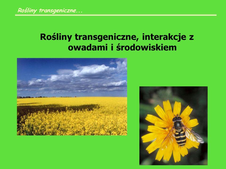 Rośliny transgeniczne, interakcje z owadami i środowiskiem Rośliny transgeniczne...