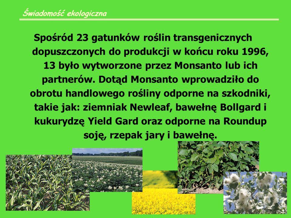 Spośród 23 gatunków roślin transgenicznych dopuszczonych do produkcji w końcu roku 1996, 13 było wytworzone przez Monsanto lub ich partnerów.