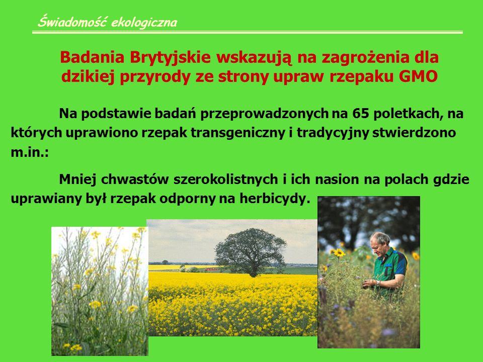 Badania Brytyjskie wskazują na zagrożenia dla dzikiej przyrody ze strony upraw rzepaku GMO Świadomość ekologiczna Na podstawie badań przeprowadzonych na 65 poletkach, na których uprawiono rzepak transgeniczny i tradycyjny stwierdzono m.in.: Mniej chwastów szerokolistnych i ich nasion na polach gdzie uprawiany był rzepak odporny na herbicydy.