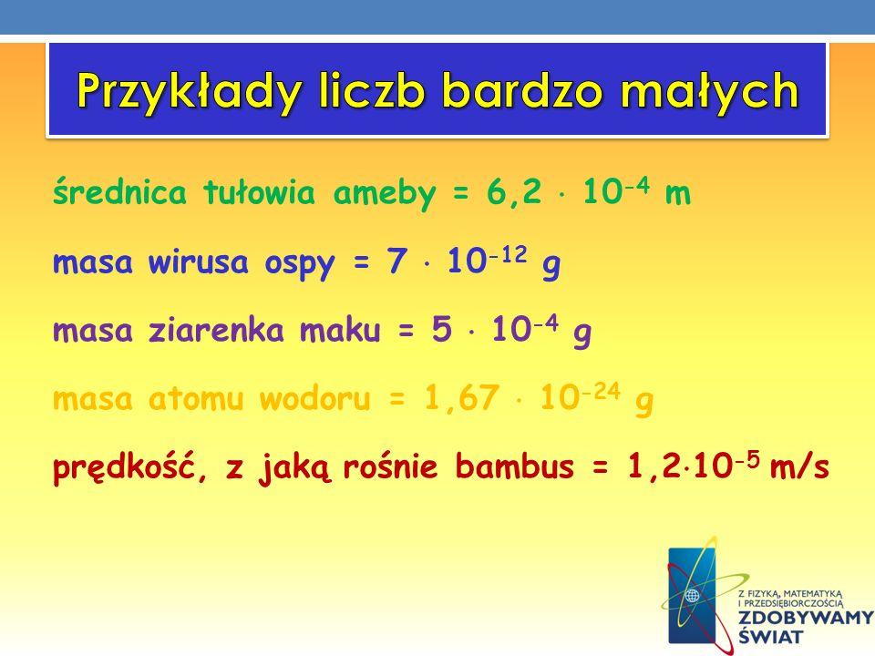 średnica tułowia ameby = 6,2 10 -4 m masa wirusa ospy = 7 10 -12 g masa ziarenka maku = 5 10 -4 g masa atomu wodoru = 1,67 10 -24 g prędkość, z jaką r