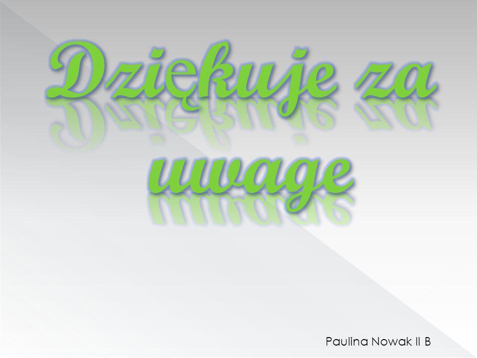Paulina Nowak II B
