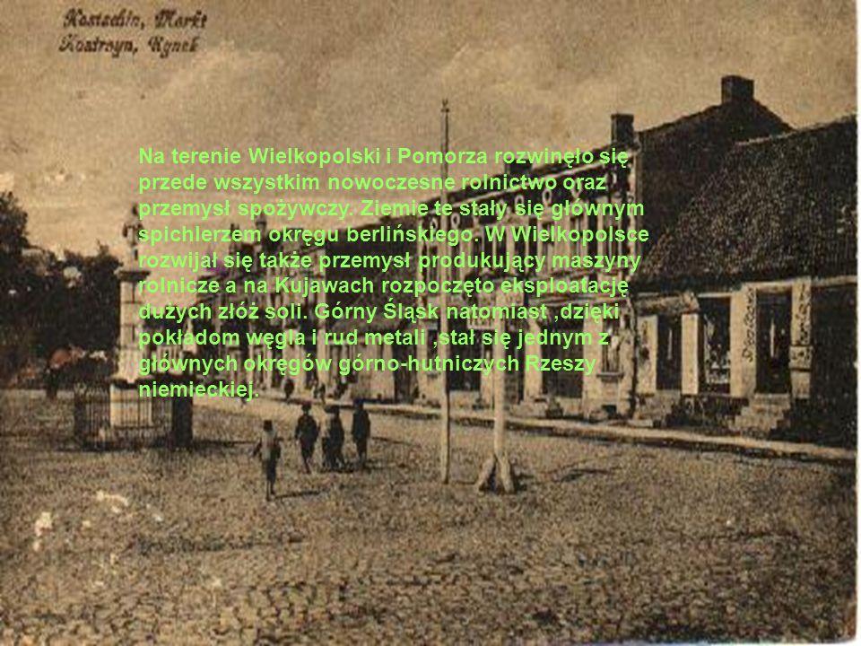 Na terenie Wielkopolski i Pomorza rozwinęło się przede wszystkim nowoczesne rolnictwo oraz przemysł spożywczy. Ziemie te stały się głównym spichlerzem