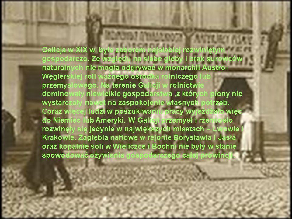 Galicja w XIX w. była zaborem najsłabiej rozwiniętym gospodarczo. Ze względu na słabe gleby i brak surowców naturalnych nie mogła odgrywać w monarchii