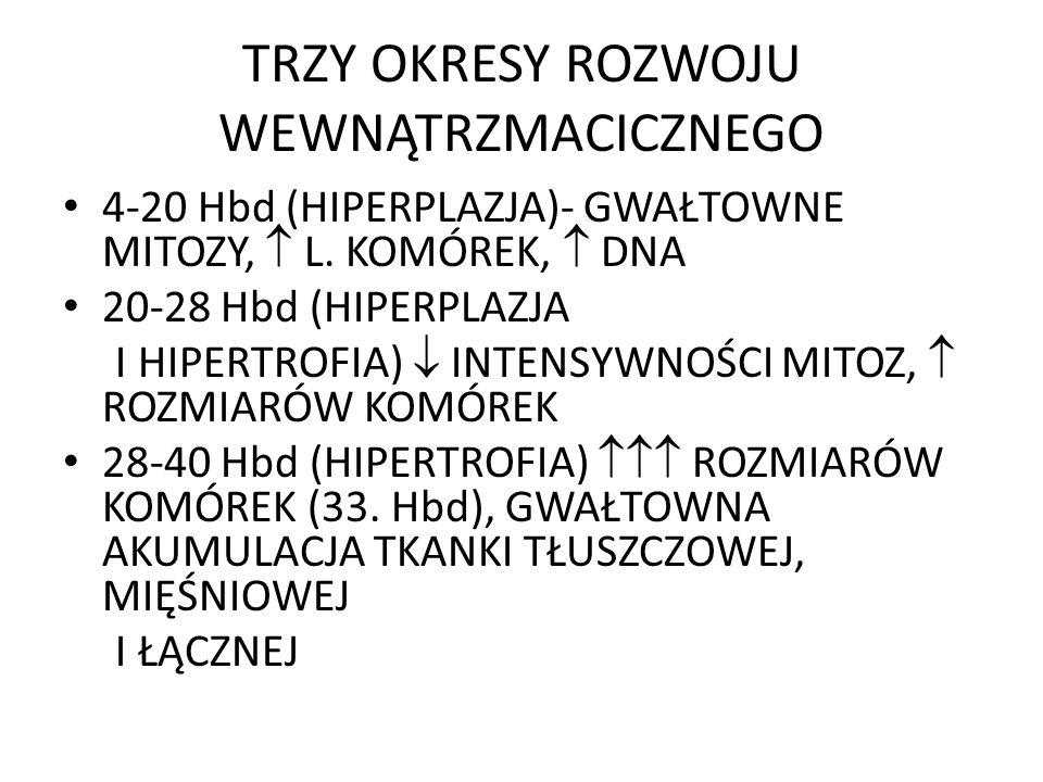 TRZY OKRESY ROZWOJU WEWNĄTRZMACICZNEGO 4-20 Hbd (HIPERPLAZJA)- GWAŁTOWNE MITOZY, L. KOMÓREK, DNA 20-28 Hbd (HIPERPLAZJA I HIPERTROFIA) INTENSYWNOŚCI M