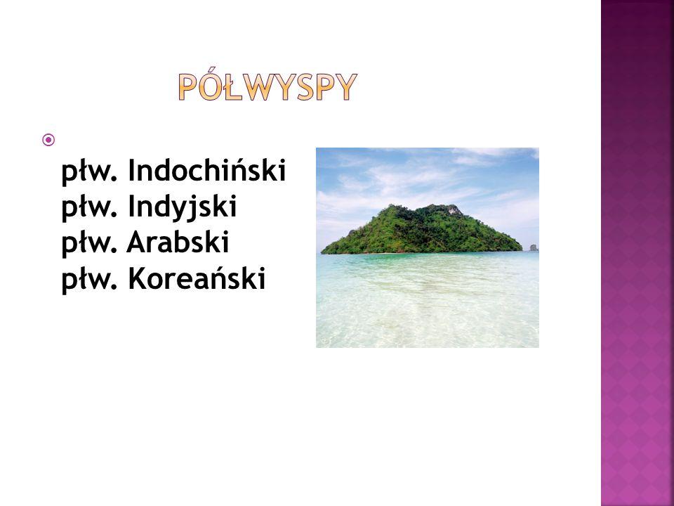 płw. Indochiński płw. Indyjski płw. Arabski płw. Koreański