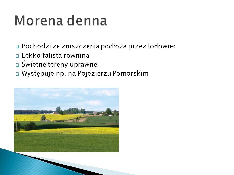Pochodzi ze zniszczenia podłoża przez lodowiec Lekko falista równina Świetne tereny uprawne Występuje np. na Pojezierzu Pomorskim