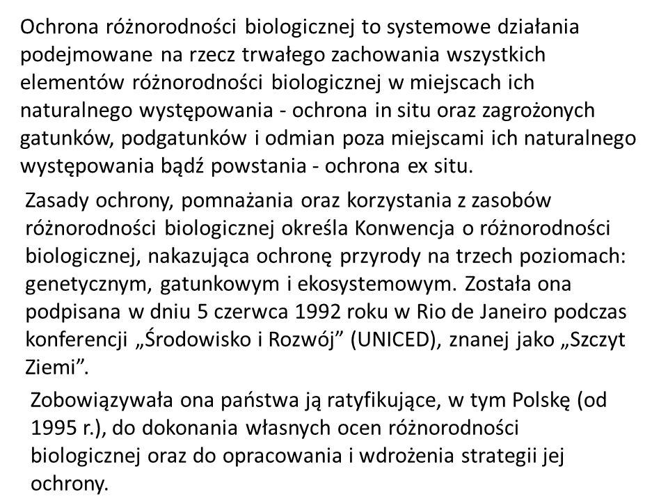 Ochrona różnorodności biologicznej to systemowe działania podejmowane na rzecz trwałego zachowania wszystkich elementów różnorodności biologicznej w m
