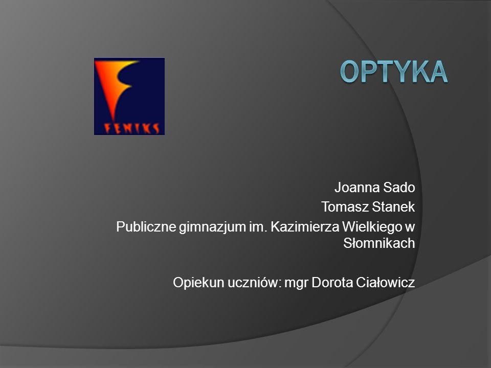Joanna Sado Tomasz Stanek Publiczne gimnazjum im. Kazimierza Wielkiego w Słomnikach Opiekun uczniów: mgr Dorota Ciałowicz