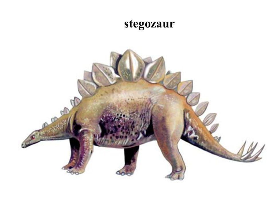 stegozaur