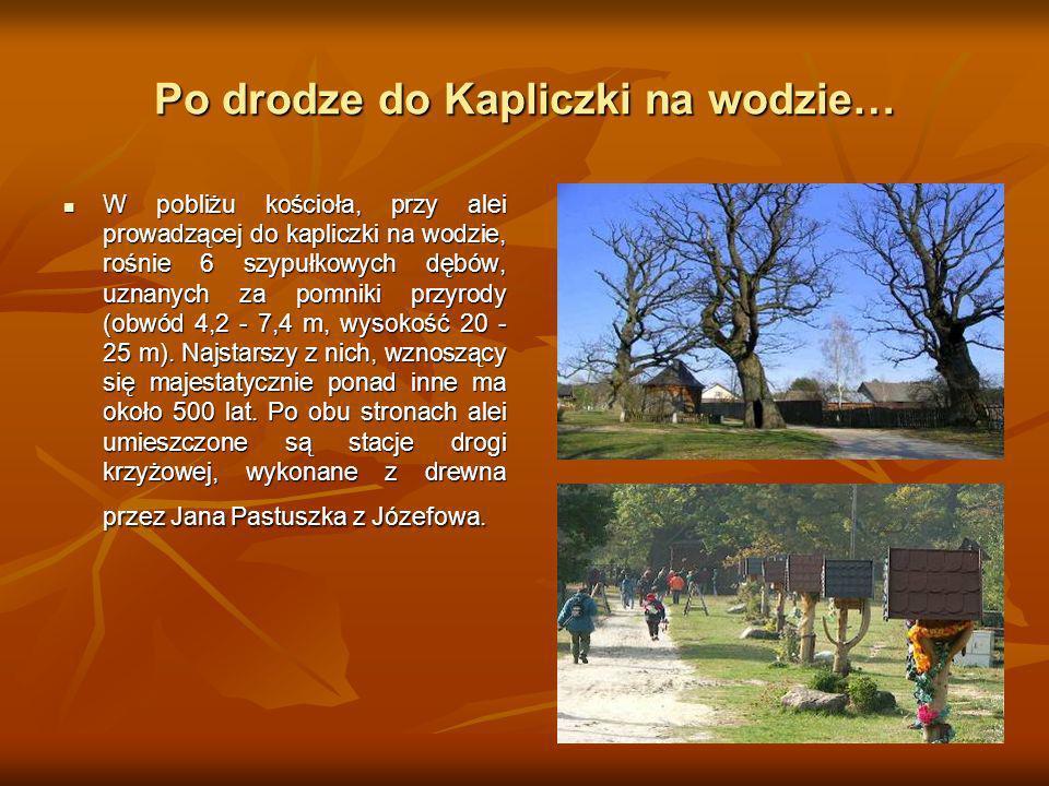 Po drodze do Kapliczki na wodzie… W pobliżu kościoła, przy alei prowadzącej do kapliczki na wodzie, rośnie 6 szypułkowych dębów, uznanych za pomniki p