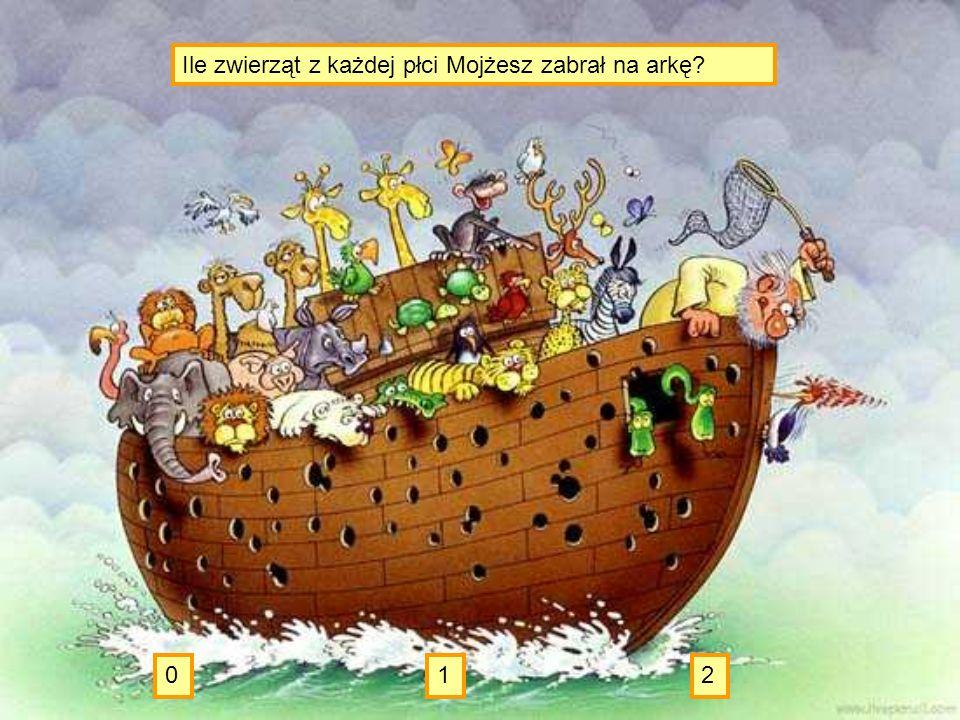 Te, które nie zdechły, czyli 9. c.d.