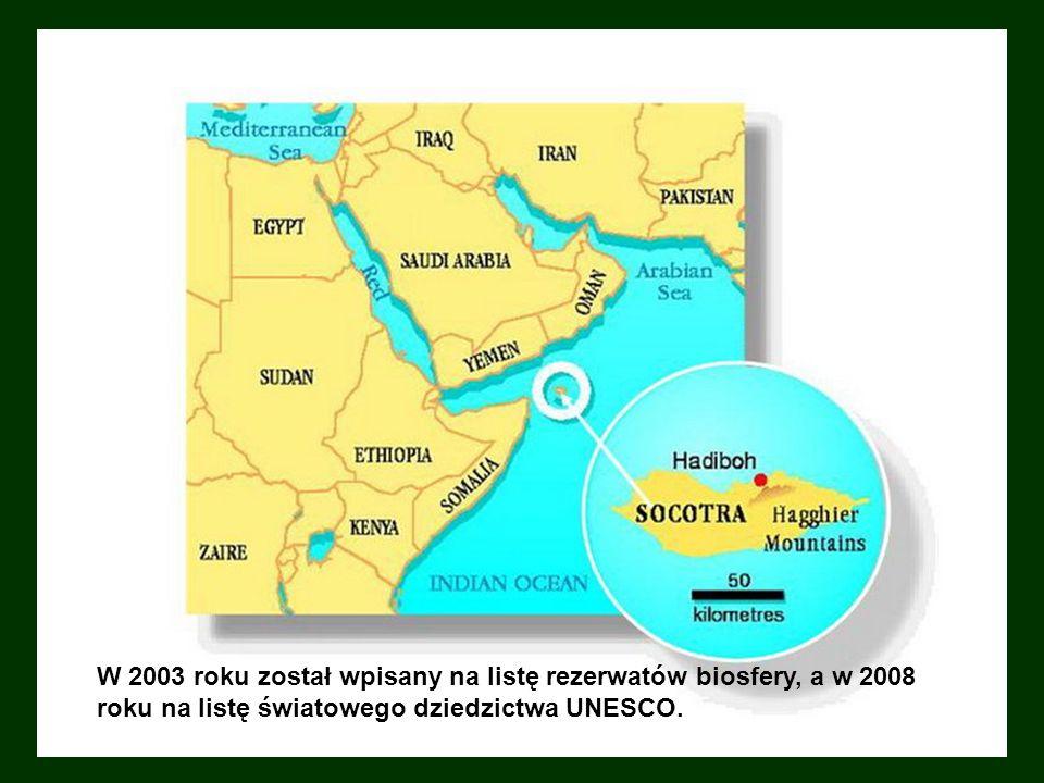 Socotra Sokotra – należący do Jemenu archipelag czterech wysp i wysepek na Oceanie Indyjskim, blisko Rogu Afryki, około 350 km na południe od Półwyspu