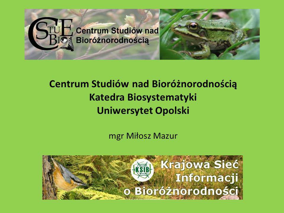 Centrum Studiów nad Bioróżnorodnością Katedra Biosystematyki Uniwersytet Opolski mgr Miłosz Mazur