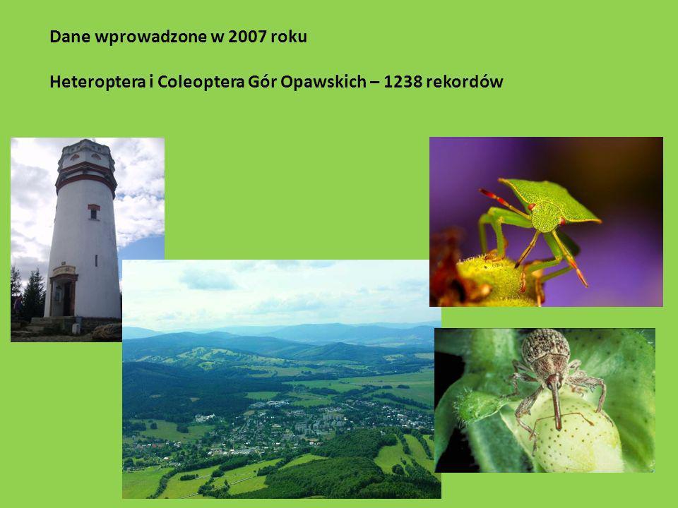 Dane wprowadzone w 2007 roku Heteroptera i Coleoptera Gór Opawskich – 1238 rekordów