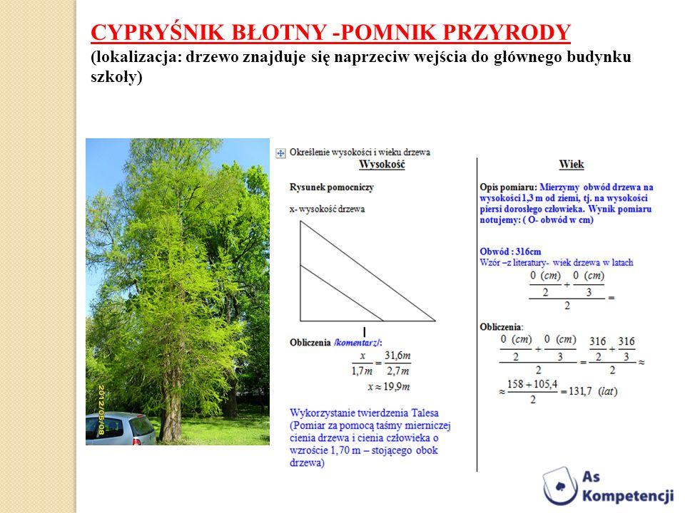 CYPRYŚNIK BŁOTNY -POMNIK PRZYRODY (lokalizacja: drzewo znajduje się naprzeciw wejścia do głównego budynku szkoły)