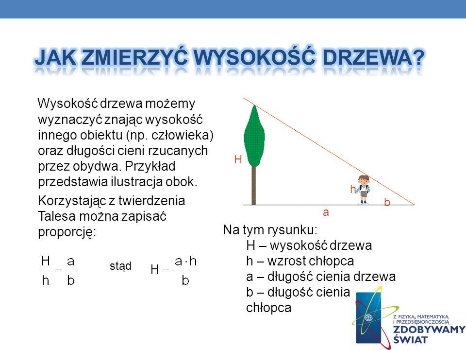 Wysokość drzewa możemy wyznaczyć znając wysokość innego obiektu (np. człowieka) oraz długości cieni rzucanych przez obydwa. Przykład przedstawia ilust